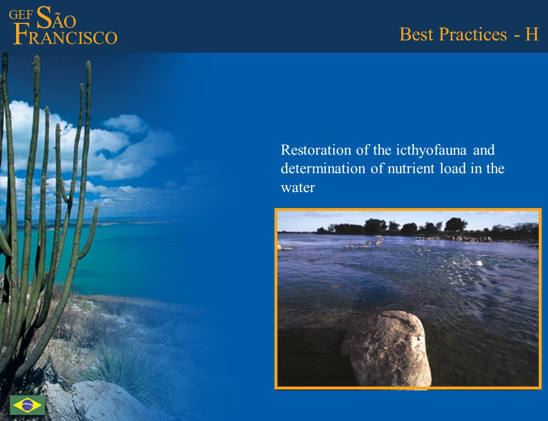 GEF S ÃO F RANCISCO Best Practices - H Restoration of the icthyofauna and determination of nutrient load in the water