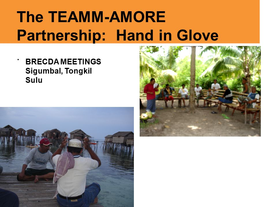 The TEAMM-AMORE Partnership: Hand in Glove. BRECDA MEETINGS Sigumbal, Tongkil Sulu