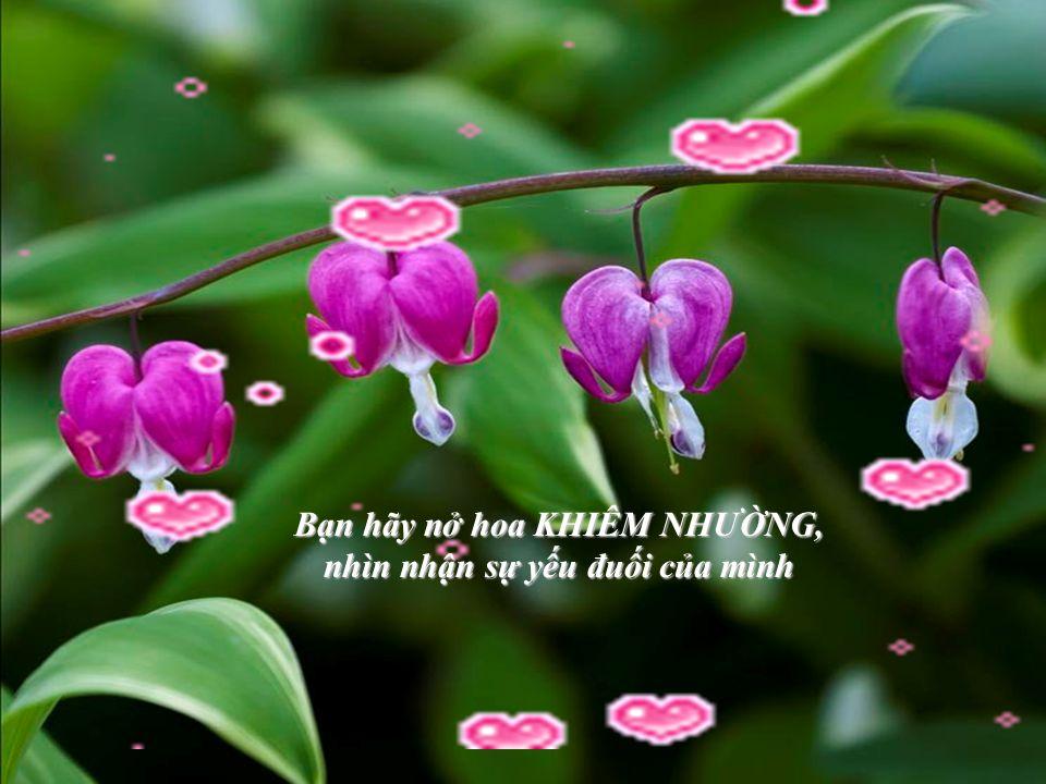 Bạn hãy nở hoa PHỤC VỤ, sẵn sàng đem lại niềm vui, hữu ích cho tha nhân Bạn hãy nở hoa XÂY DỰNG, không đạp đổ thiện chí người khác