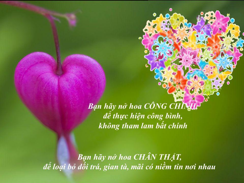 Bạn hãy nở hoa HÒA BÌNH, vun xới cho sự thuận hòa, cảm thông giữa con người