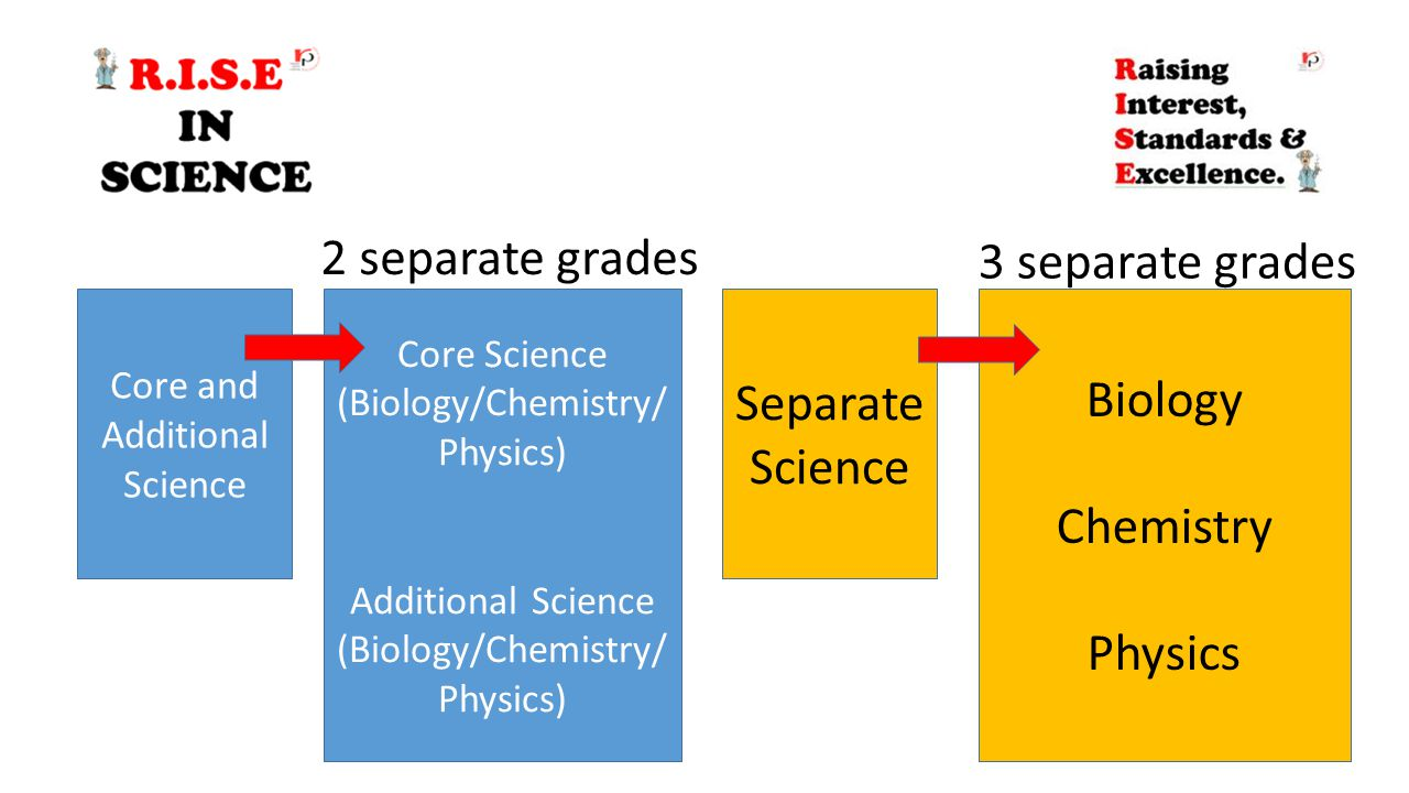 Core and Additional Science Separate Science Core Science (Biology/Chemistry/ Physics) Additional Science (Biology/Chemistry/ Physics) Biology Chemist