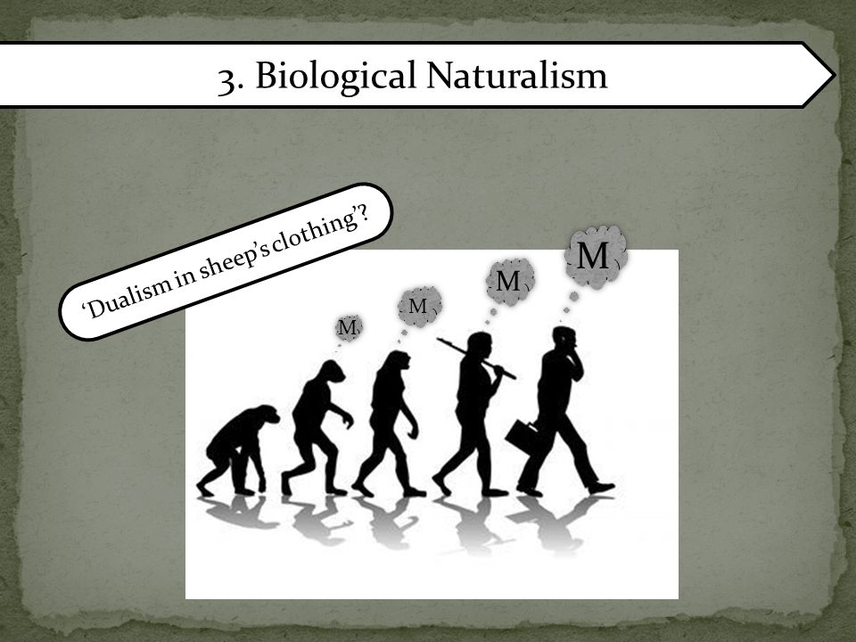 3. Biological Naturalism MM MM MM MM 'Dualism in sheep's clothing'