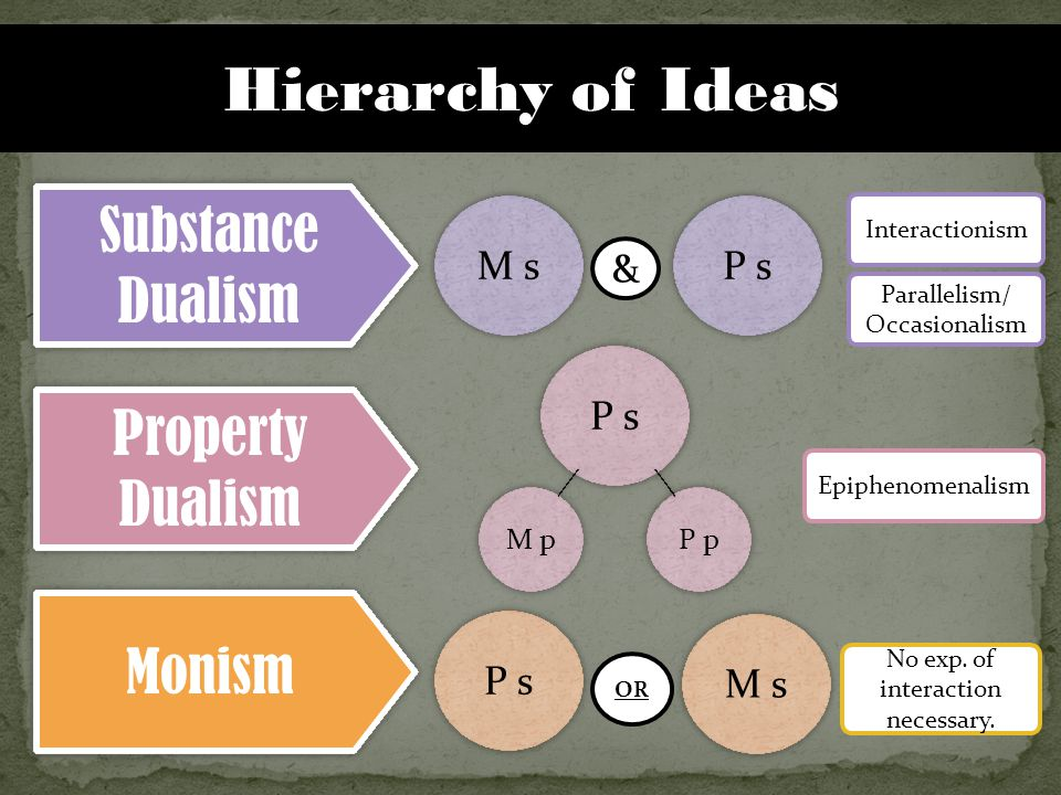 Hierarchy of Ideas Substance Dualism Property Dualism Monism M s P s M p P s P p P s Interactionism Parallelism/ Occasionalism Epiphenomenalism No exp.