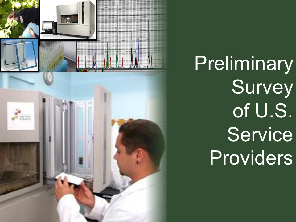 Preliminary Survey of U.S. Service Providers