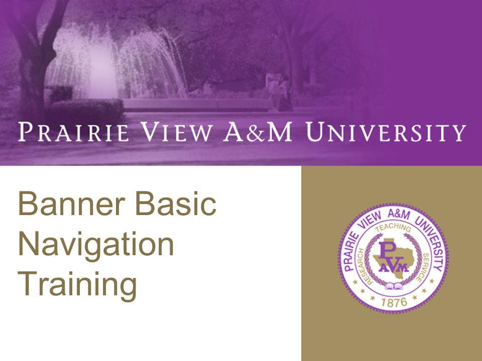 Banner Basic Navigation Training