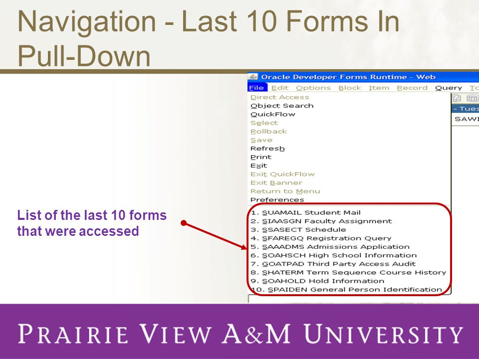 Navigation - Last 10 Forms In Pull-Down List of the last 10 forms that were accessed
