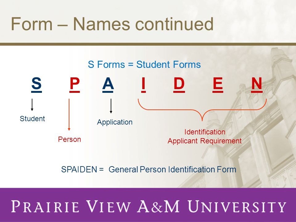 Form – Names continued S Forms = Student Forms S P A I D E N Student Person Application Identification Applicant Requirement SPAIDEN = General Person Identification Form