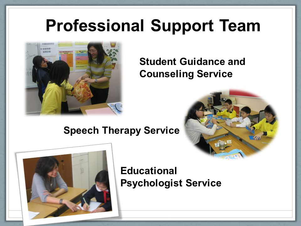 Professional Support Team Student Guidance and Counseling Service Speech Therapy Service Educational Psychologist Service