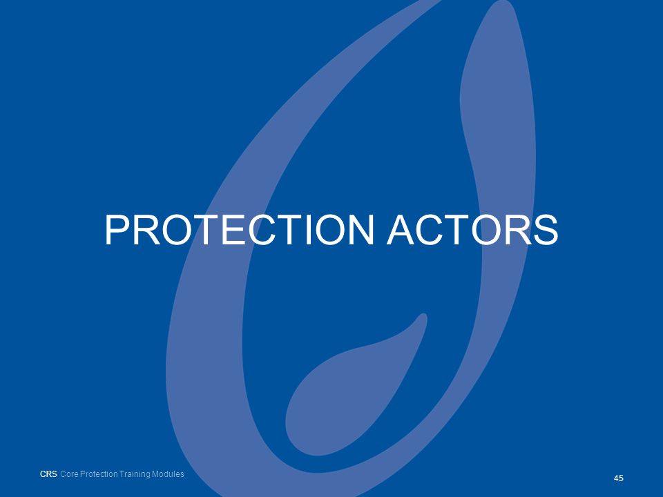 PROTECTION ACTORS 45 CRS Core Protection Training Modules