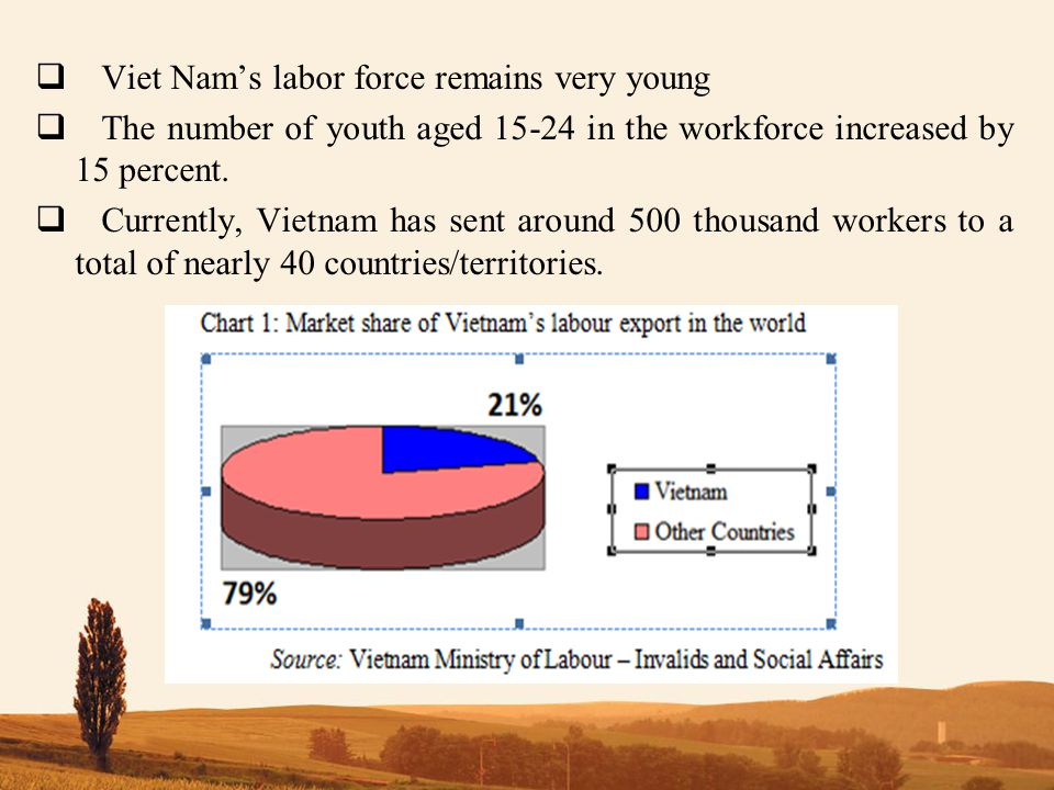  Viet Nam's labor force remains very young  The number of youth aged 15-24 in the workforce increased by 15 percent.