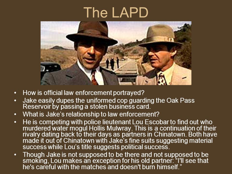 The LAPD How is official law enforcement portrayed.