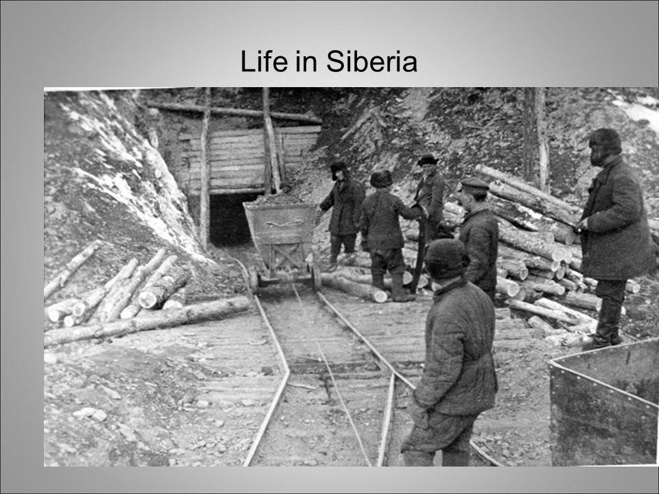 Life in Siberia