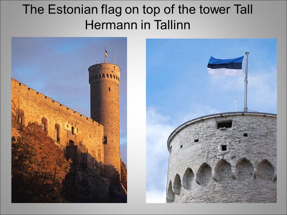 The Estonian flag on top of the tower Tall Hermann in Tallinn