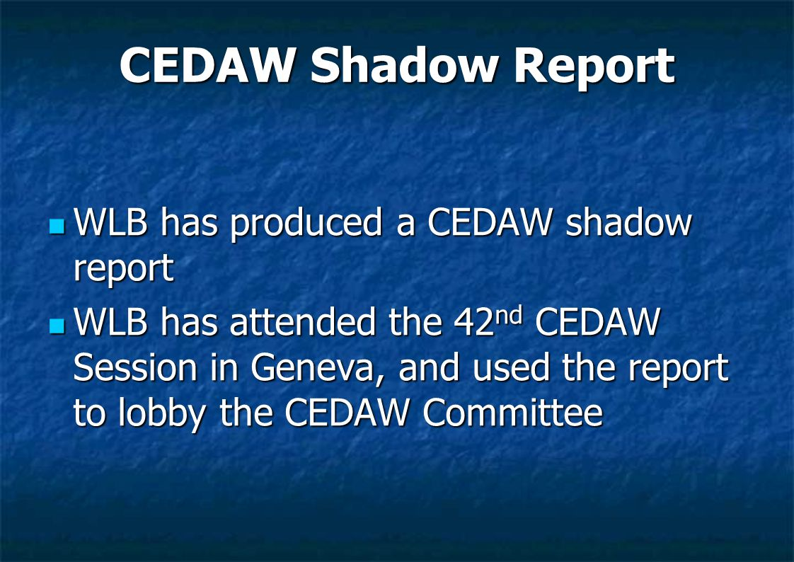 CEDAW Shadow Report WLB has produced a CEDAW shadow report WLB has produced a CEDAW shadow report WLB has attended the 42 nd CEDAW Session in Geneva,