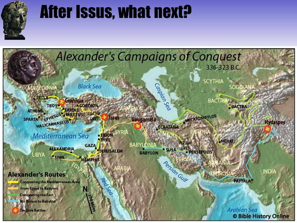 After Issus, what next?