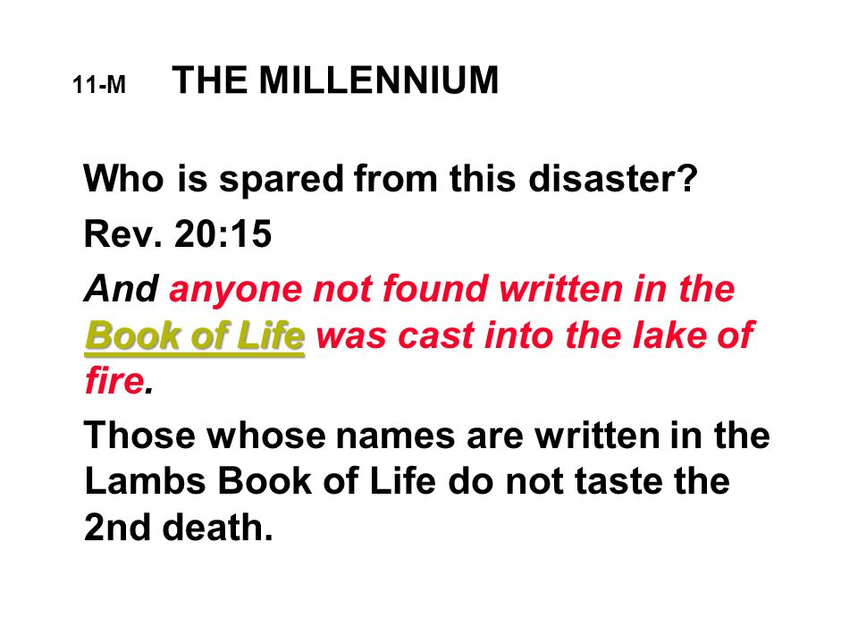 11-M THE MILLENNIUM Who is spared from this disaster.