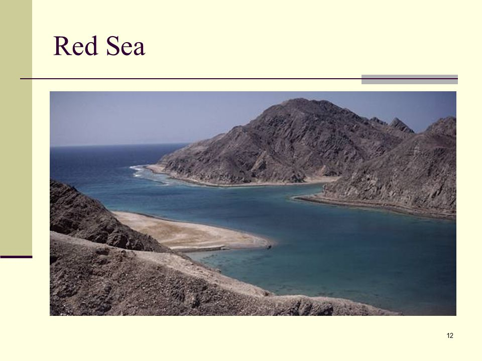 12 Red Sea