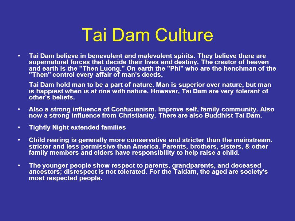 Tai Dam Culture Tai Dam believe in benevolent and malevolent spirits.
