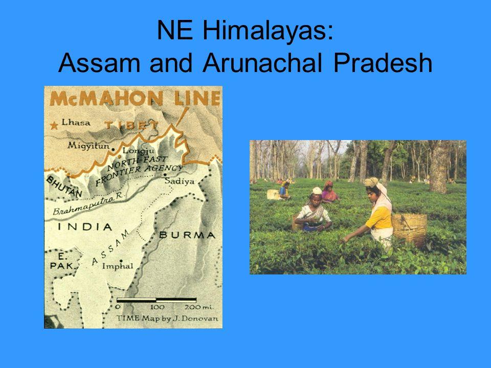 NE Himalayas: Assam and Arunachal Pradesh