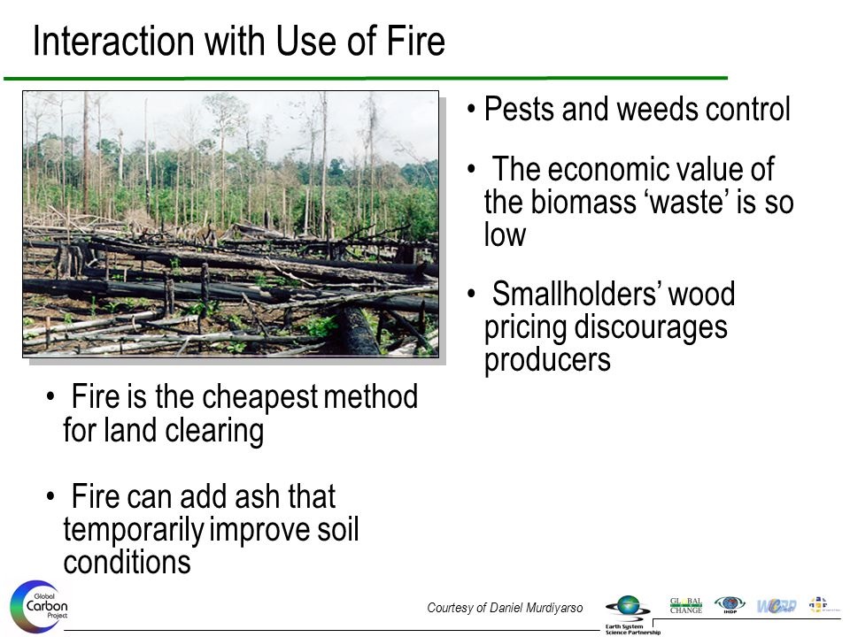Pests and weeds control The economic value of the biomass 'waste' is so low Smallholders' wood pricing discourages producers Interaction with Use of F