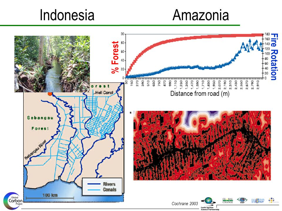IndonesiaAmazonia Fire Rotation % Forest Distance from road (m) Cochrane 2003