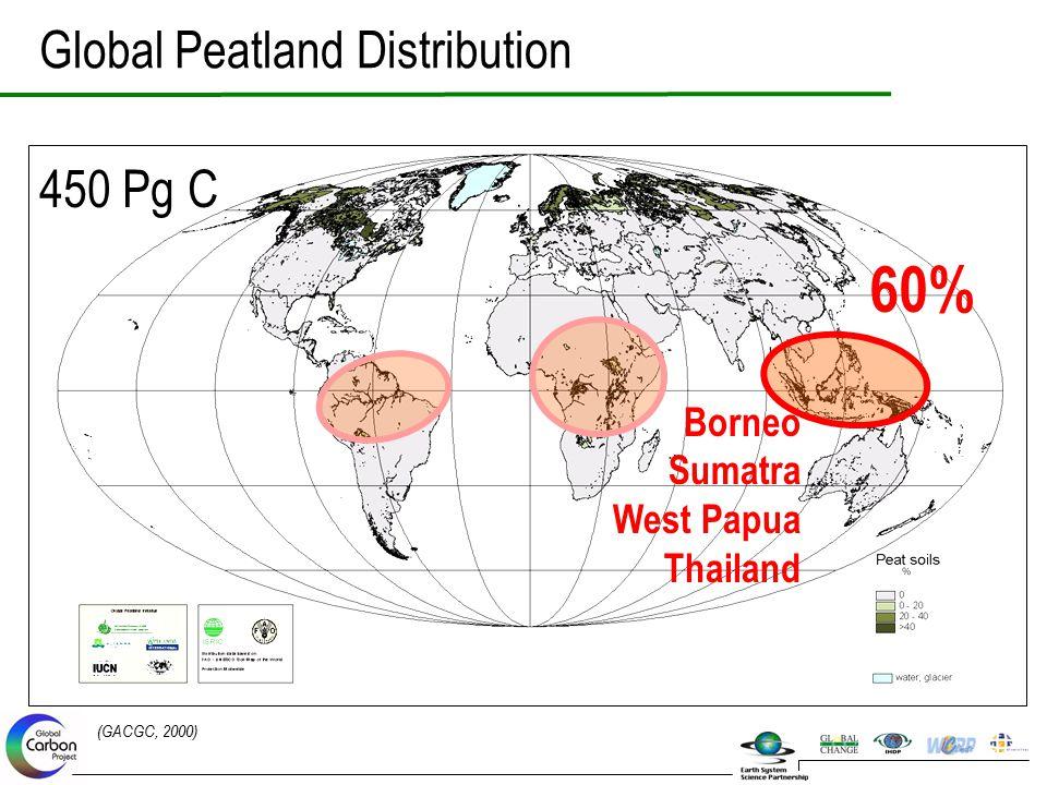 Global Peatland Distribution 450 Pg C (GACGC, 2000) 60% Borneo Sumatra West Papua Thailand