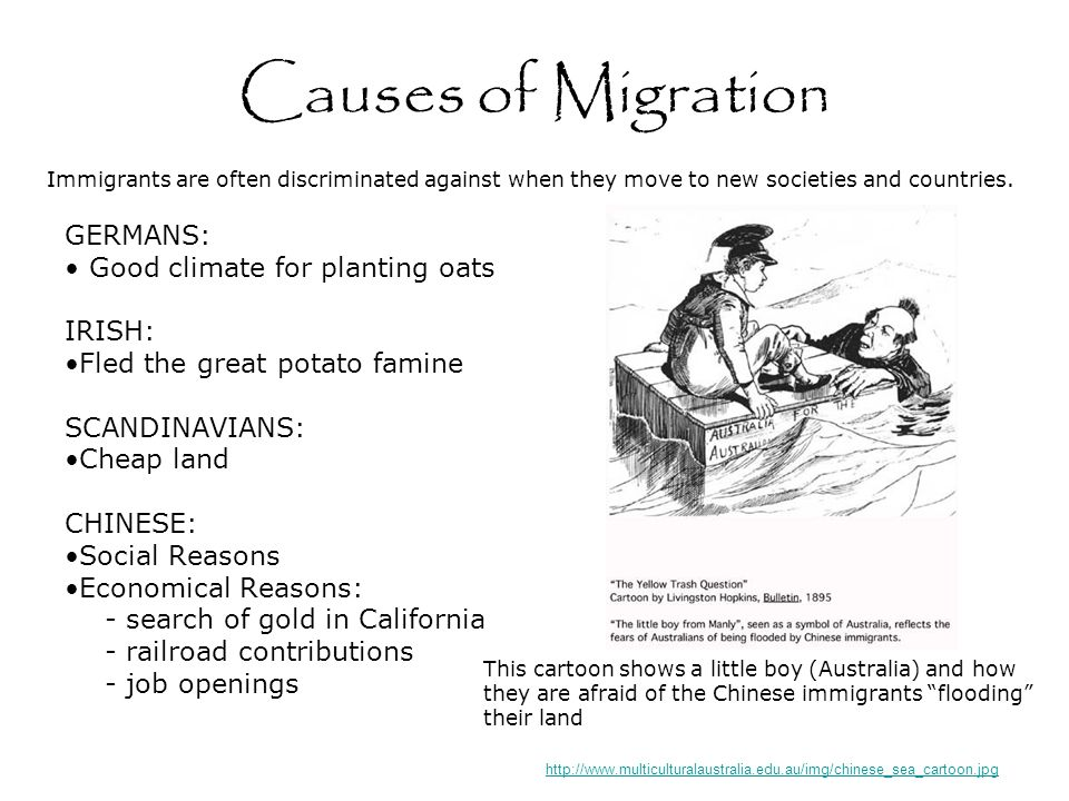 Causes of Migration GERMANS: Good climate for planting oats IRISH: Fled the great potato famine SCANDINAVIANS: Cheap land CHINESE: Social Reasons Economical Reasons: - search of gold in California - railroad contributions - job openings http://www.multiculturalaustralia.edu.au/img/chinese_sea_cartoon.jpg Immigrants are often discriminated against when they move to new societies and countries.