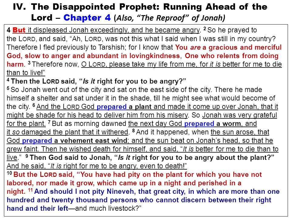 IV.The Disappointed Prophet: Running Ahead of the Lord – Chapter 4 (Also, The Reproof of Jonah) 4 But it displeased Jonah exceedingly, and he became angry.