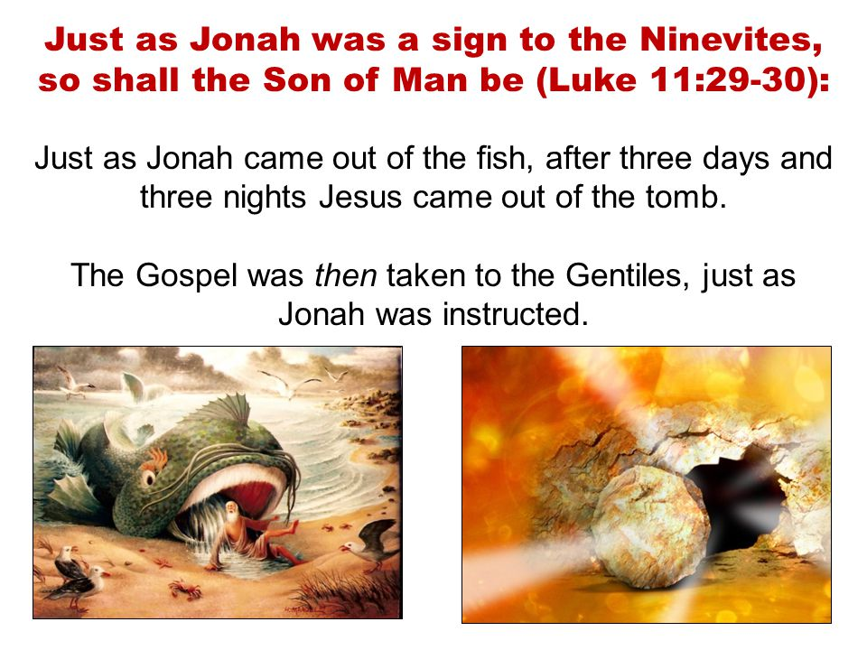 Just as Jonah was a sign to the Ninevites, so shall the Son of Man be (Luke 11:29-30): Just as Jonah came out of the fish, after three days and three nights Jesus came out of the tomb.
