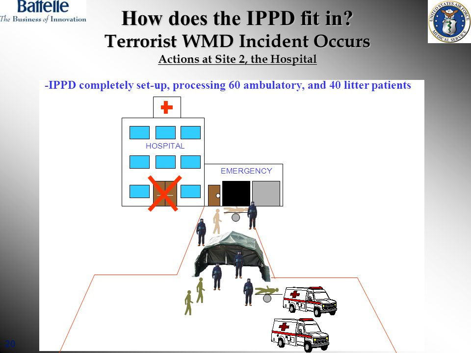 20 How does the IPPD fit in.