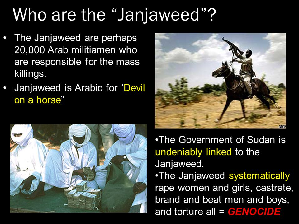 Who are the Janjaweed .