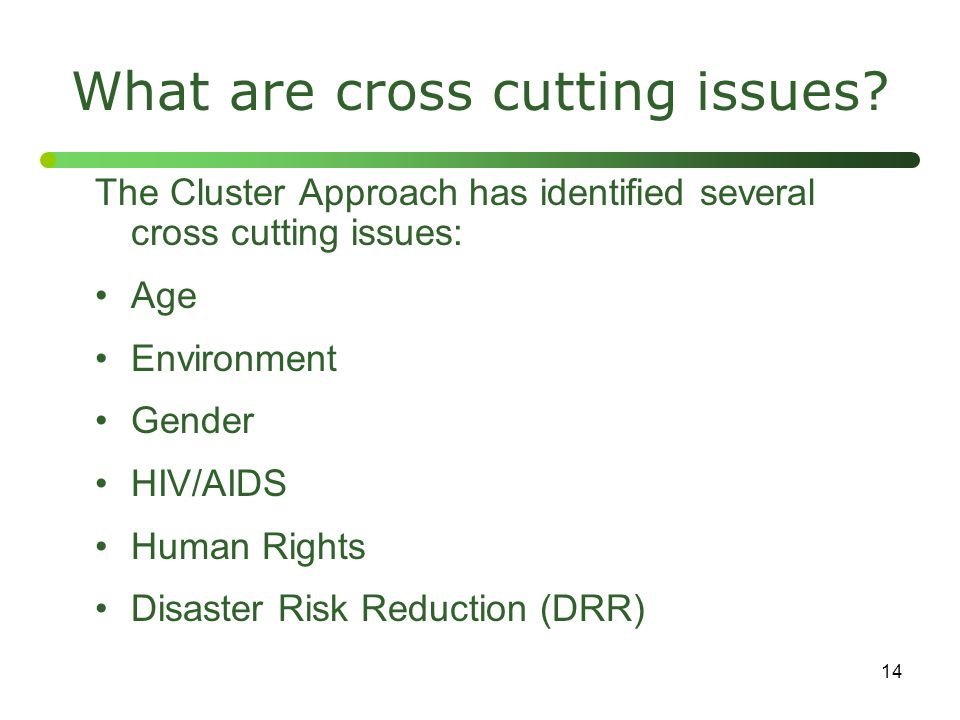 14 What are cross cutting issues? The Cluster Approach has identified several cross cutting issues: Age Environment Gender HIV/AIDS Human Rights Disas