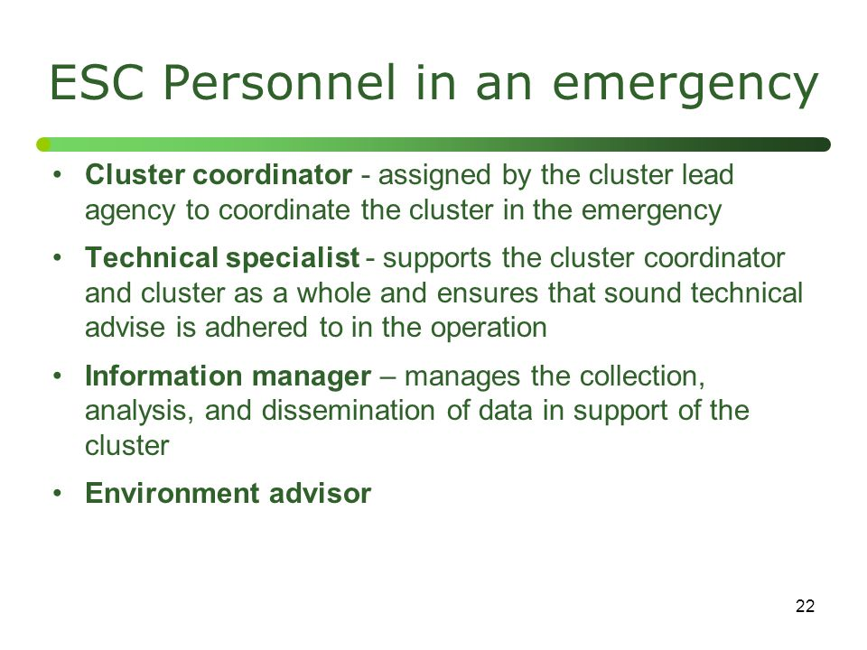 22 ESC Personnel in an emergency Cluster coordinator - assigned by the cluster lead agency to coordinate the cluster in the emergency Technical specia