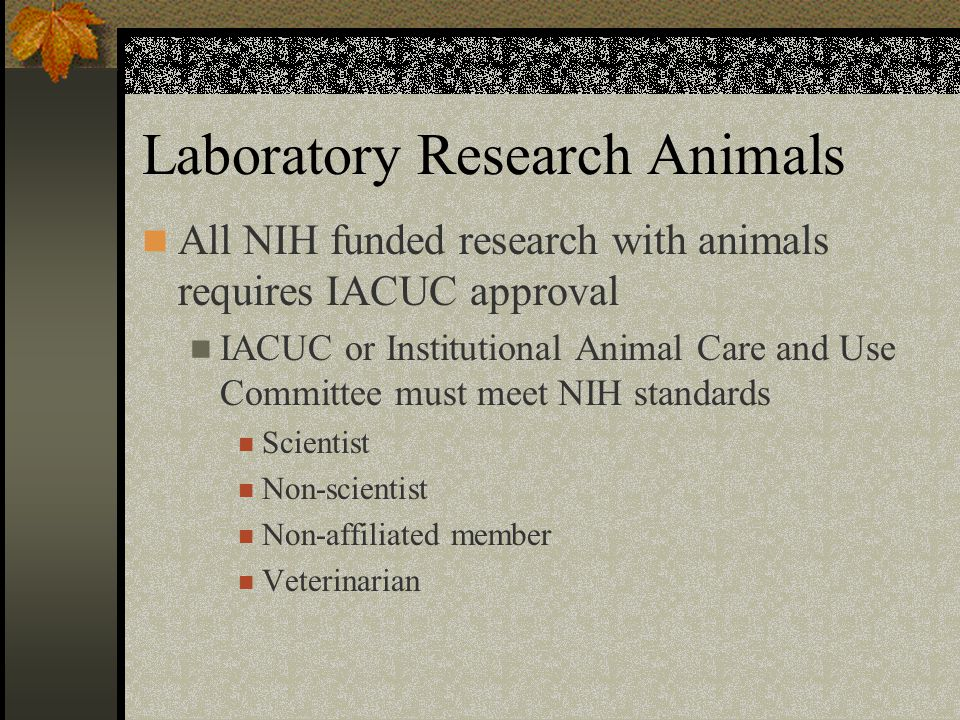 All NIH funded research with animals requires IACUC approval IACUC or Institutional Animal Care and Use Committee must meet NIH standards Scientist Non-scientist Non-affiliated member Veterinarian