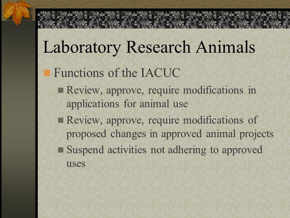 Laboratory Research Animals Functions of the IACUC Review, approve, require modifications in applications for animal use Review, approve, require modifications of proposed changes in approved animal projects Suspend activities not adhering to approved uses