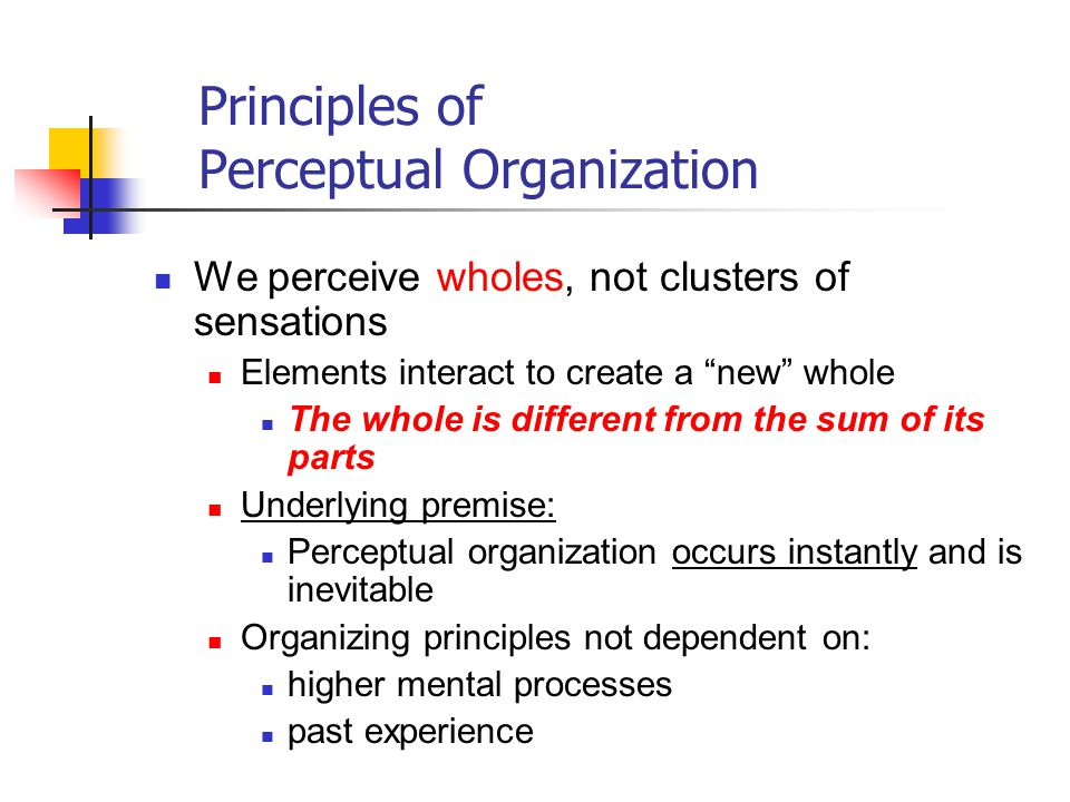 Principles of Perceptual Organization We perceive wholes, not clusters of sensations Elements interact to create a new whole The whole is different from the sum of its parts Underlying premise: Perceptual organization occurs instantly and is inevitable Organizing principles not dependent on: higher mental processes past experience