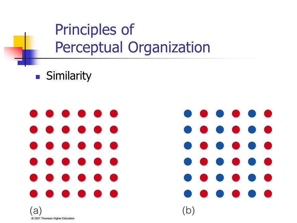 Similarity Principles of Perceptual Organization