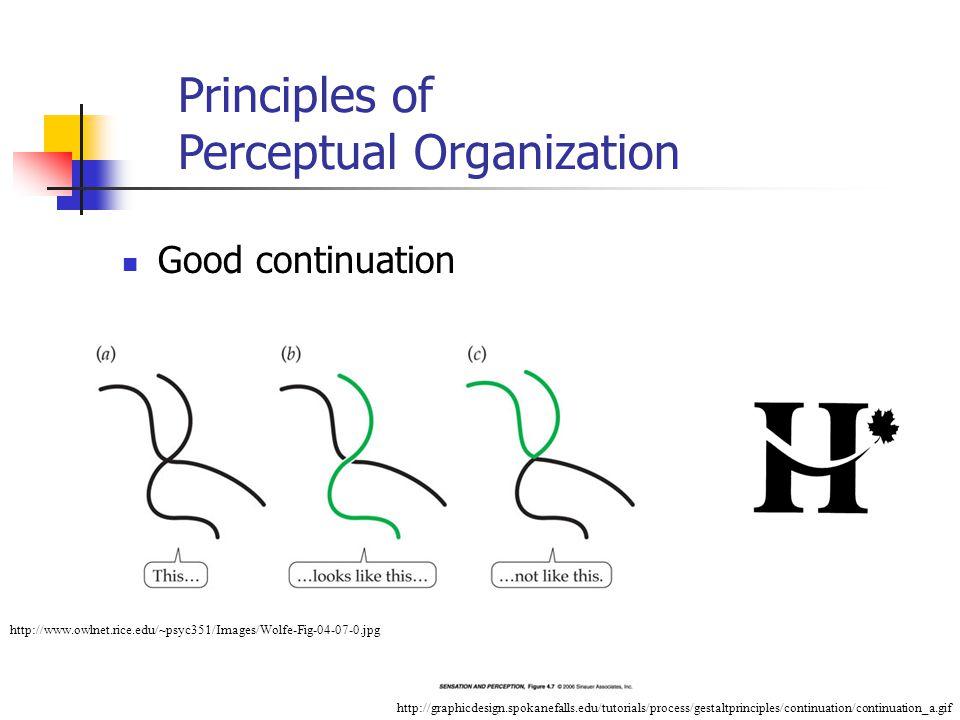 Good continuation http://www.owlnet.rice.edu/~psyc351/Images/Wolfe-Fig-04-07-0.jpg http://graphicdesign.spokanefalls.edu/tutorials/process/gestaltprinciples/continuation/continuation_a.gif Principles of Perceptual Organization