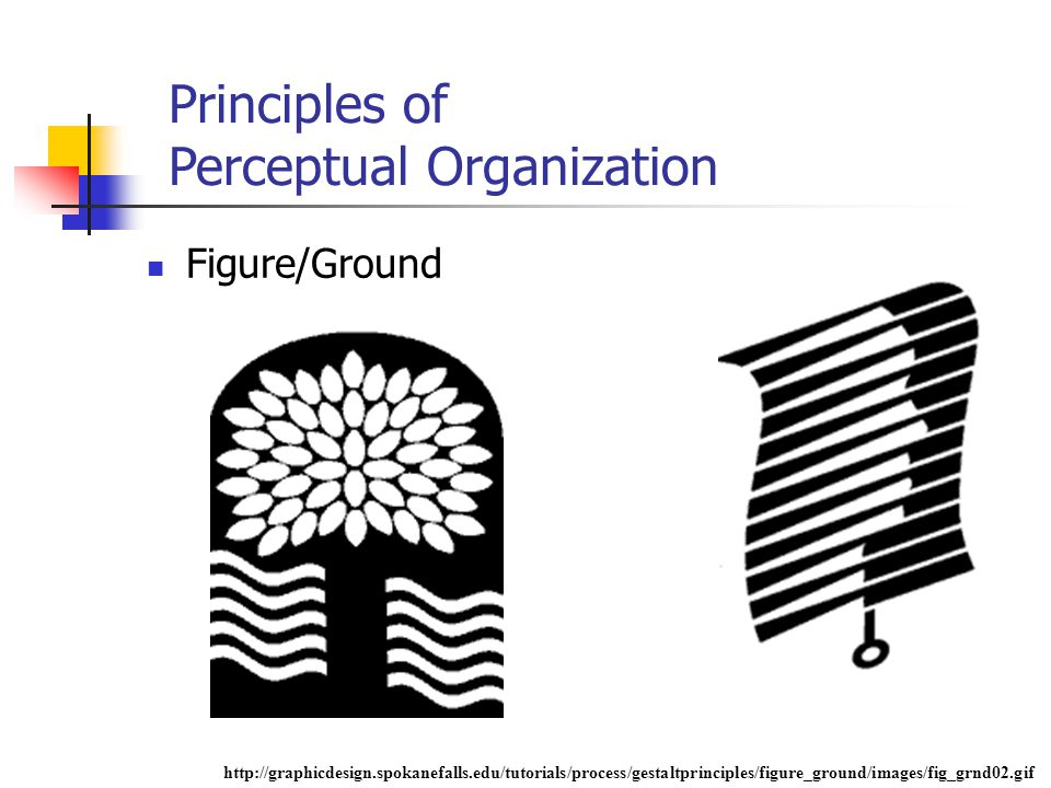 Principles of Perceptual Organization Figure/Ground http://graphicdesign.spokanefalls.edu/tutorials/process/gestaltprinciples/figure_ground/images/fig_grnd02.gif