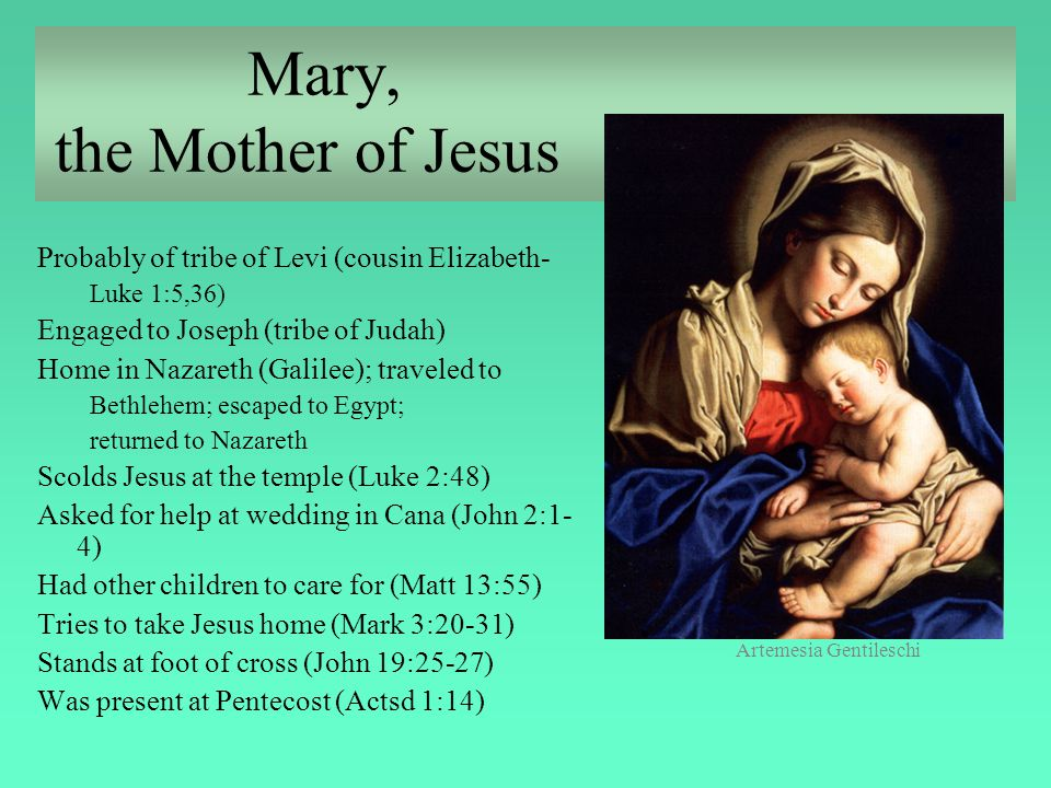 Mary, the Mother of Jesus Probably of tribe of Levi (cousin Elizabeth- Luke 1:5,36) Engaged to Joseph (tribe of Judah) Home in Nazareth (Galilee); tra