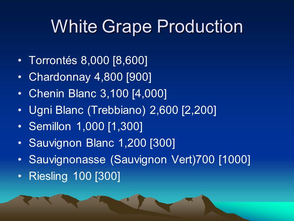 White Grape Production Torrontés 8,000 [8,600] Chardonnay 4,800 [900] Chenin Blanc 3,100 [4,000] Ugni Blanc (Trebbiano) 2,600 [2,200] Semillon 1,000 [1,300] Sauvignon Blanc 1,200 [300] Sauvignonasse (Sauvignon Vert)700 [1000] Riesling 100 [300]