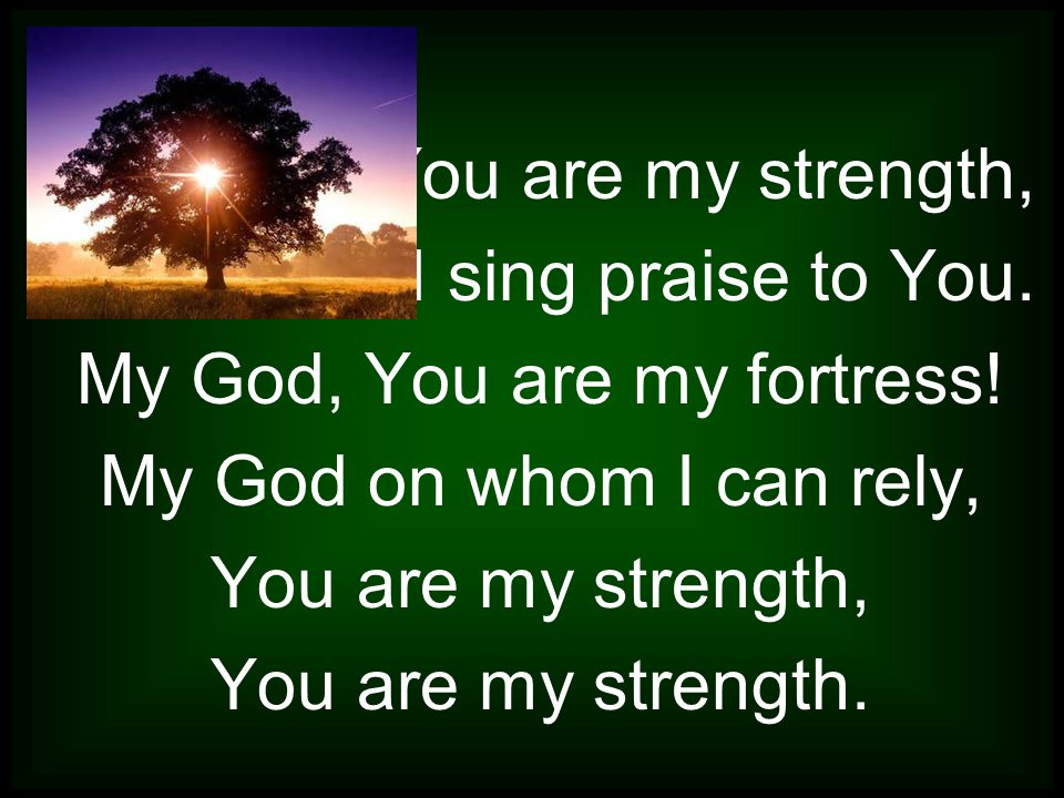 You are my strength, I sing praise to You. My God, You are my fortress.
