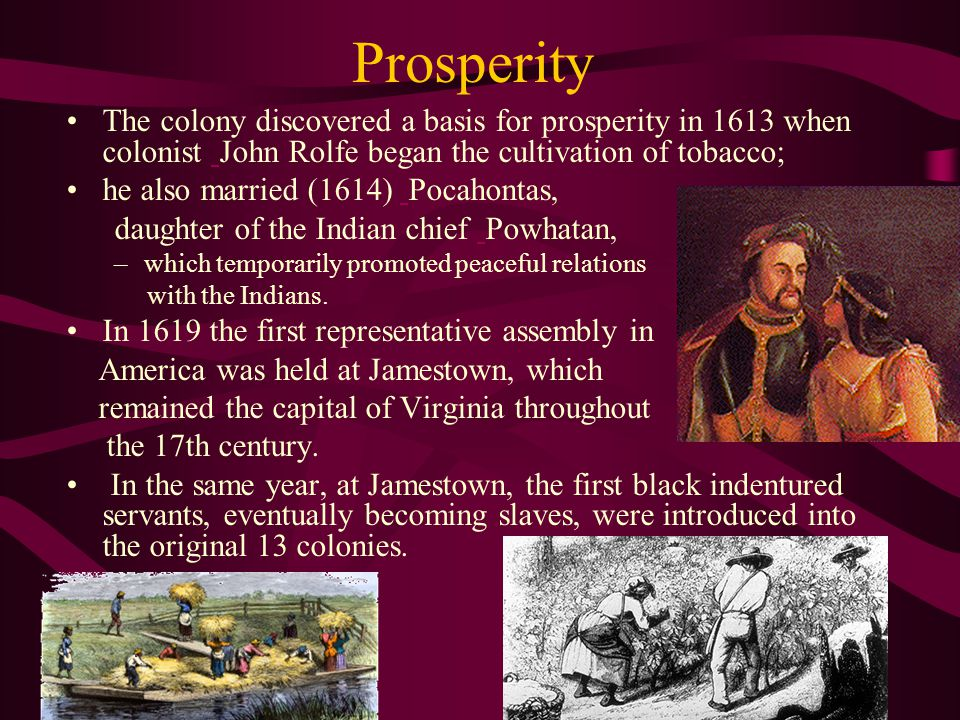 Prosperity The colony discovered a basis for prosperity in 1613 when colonist John Rolfe began the cultivation of tobacco; he also married (1614) Pocahontas, daughter of the Indian chief Powhatan, –w–which temporarily promoted peaceful relations with the Indians.