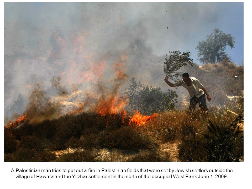 A Palestinian man tries to put out a fire in Palestinian fields that were set by Jewish settlers outside the village of Hawara and the Yitzhar settlement in the north of the occupied West Bank June 1, 2009.