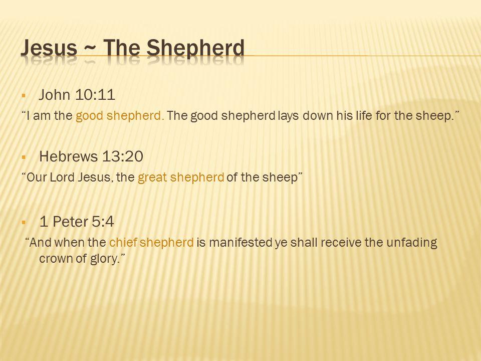  Genesis 37:13-14 And Israel said unto Joseph, Do not thy brethren feed the flock in Shechem.