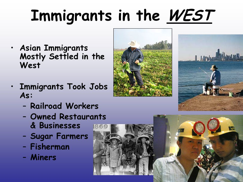 Immigrants in the WEST Asian Immigrants Mostly Settled in the West Immigrants Took Jobs As: –Railroad Workers –Owned Restaurants & Businesses –Sugar Farmers –Fisherman –Miners
