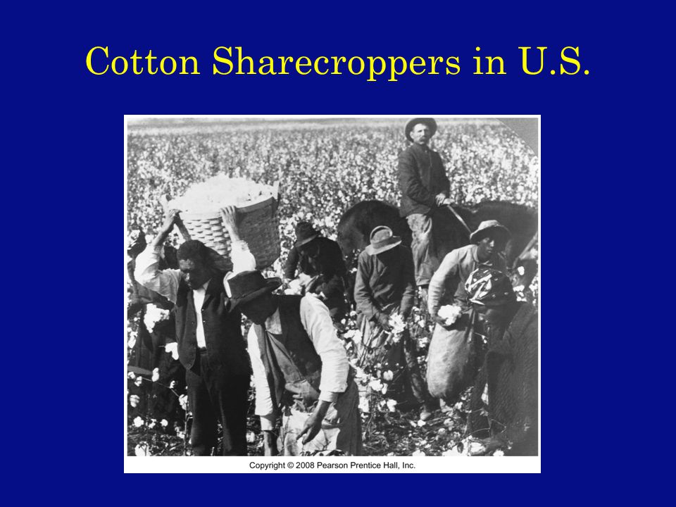 Cotton Sharecroppers in U.S.