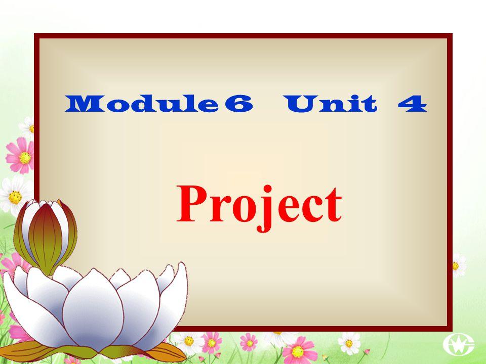 Project Module 6 Unit 4