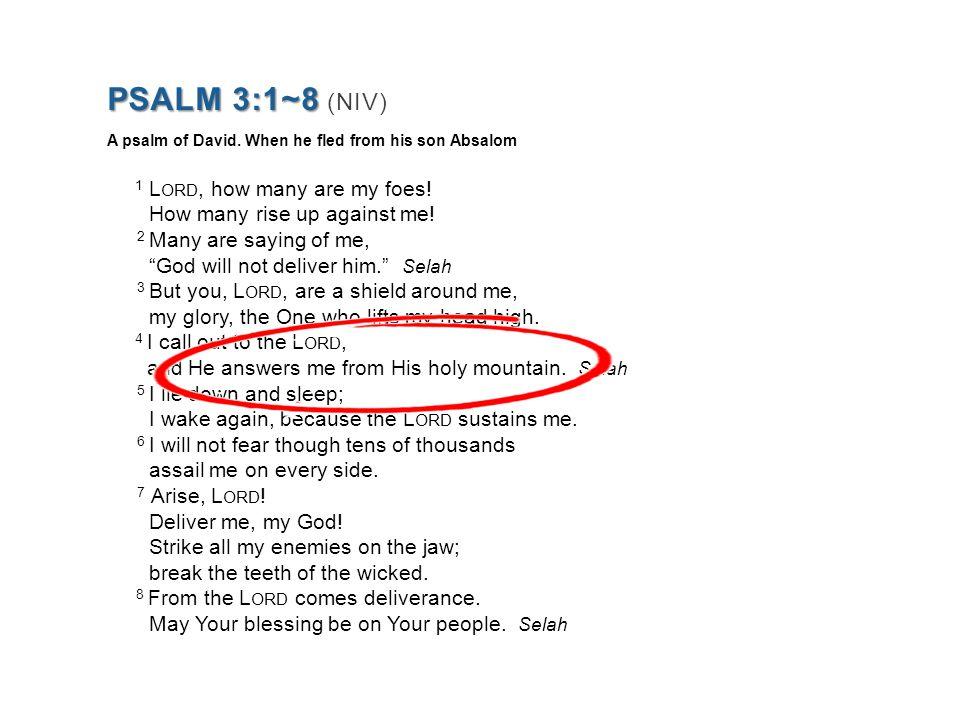 PSALM 3:1~8 PSALM 3:1~8 (NIV) A psalm of David.