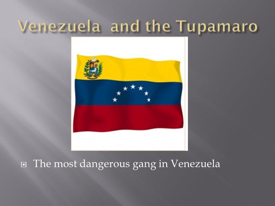  The most dangerous gang in Venezuela